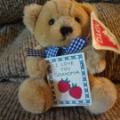 WT Vintage 1994 Dakin Garden Of Love Message Bear Tan Teddy Bear Plush 5""
