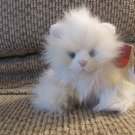"""WT Russ Berrie #24552 Whisper White Long Hair Furry Kitty Cat Lovey Plush 9"""""""
