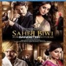 Saheb Biwi Aur Gangster Returns Hindi Blu Ray (2013/Jimmy shergill/Cinema/Film)
