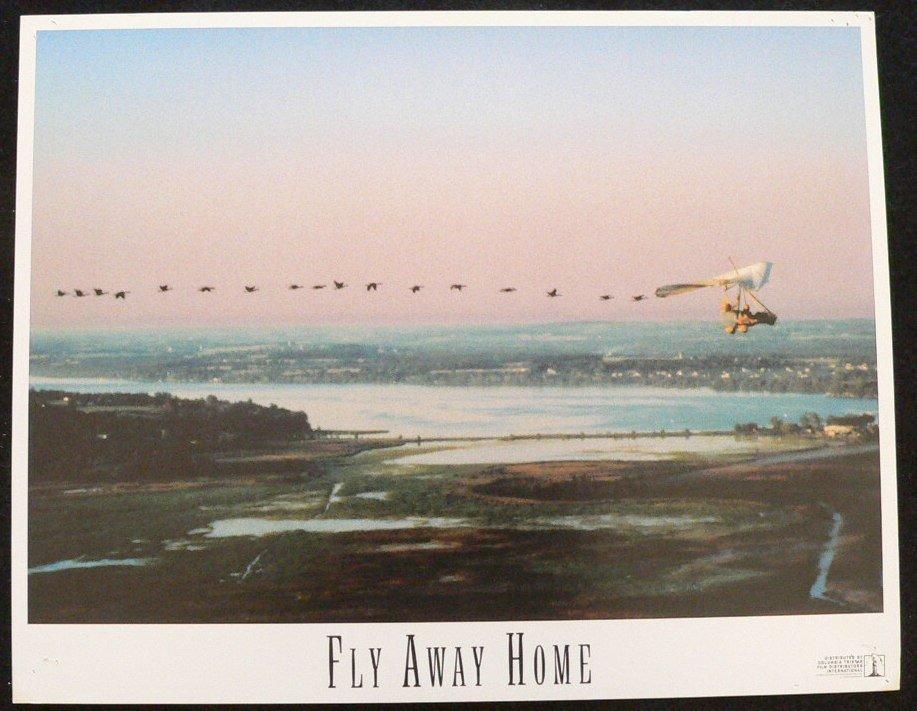 FLY AWAY HOME       LOBBY CARD   11X14