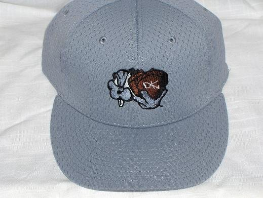 DK-flexfit cap