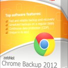 zebNet Chrome Backup 2012