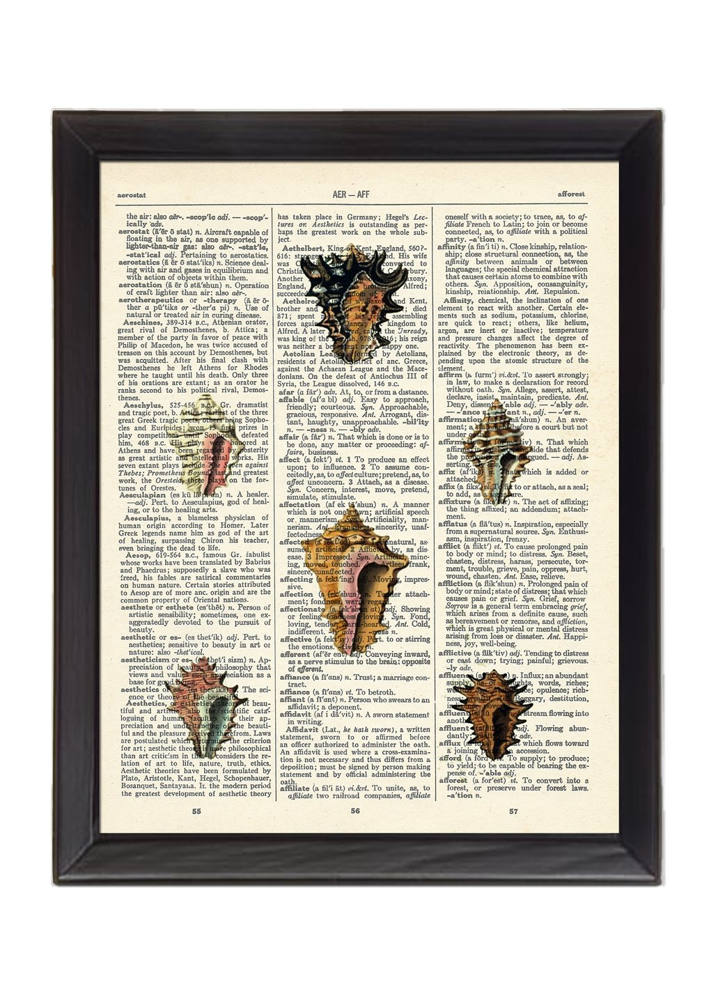 Tiny Sea Shells Version2 Printed On 1900's Dictionary Page 8x10