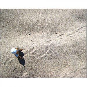 Ernest Tracks a Bird 8x10 photo
