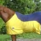 Designer Fleece Horse Cooler for Equine Protection