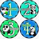 PANDA BEARS ONESIE STICKERS waterproof durable by Onesie Stickers, Free Milestone Stickers