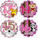 HUGGY BEARS MONTHLY ONESIE STICKERS 13-24 MONTHS, Free Milestone Stickers