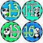 PANDA BEARS MONTHLY ONESIE STICKERS 13-24 MONTHS, infants and toddlers Photo Scrapbooking