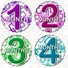 Monthly Onesie stickers BOX SQUARES 1 to 12 months baby shower gifts