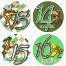 Boys Green Monkeys Onesie monthly stickers for mom to be