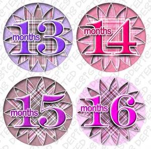 Girl Pink Gingham Monthly Onesie stickers baby album stickers