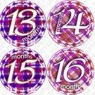 Purple Gingham Monthly Onesie stickers baby album stickers