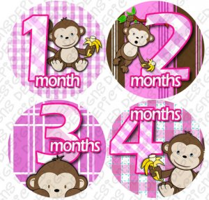 Girl Monkeys Go Bananas Baby Month Stickers baby album stickers