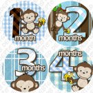 Boy blue Monkeys Go Bananas Baby Month Stickers baby album stickers