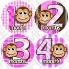 Girls Pink Monket Stripes Baby Month Stickers baby album stickers