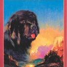Seaman: The Dog Who Explored the West With Lewis and Clark (Paperback) - LIKE NEW