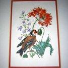 Bird & poppy botanical print British Museum of Natural History AL1111