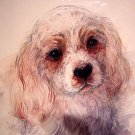 Adorable sketch cocker spaniel puppy dog signed Mady Stage 1976 AL1134