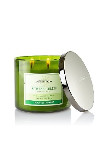 Bath and Body Works Armotherapy EUCALYPTUS SPEARMINT Scented Candle 14.5 Oz