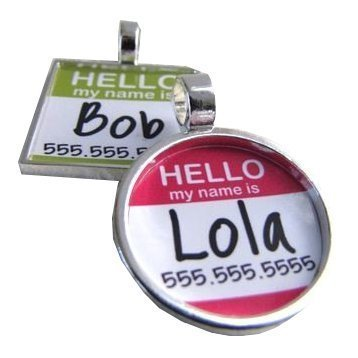 Hello My Name Is...Custom Pet ID Tag