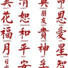 Chinese Words Inspirational Vinyl Stickers (20 Decals)