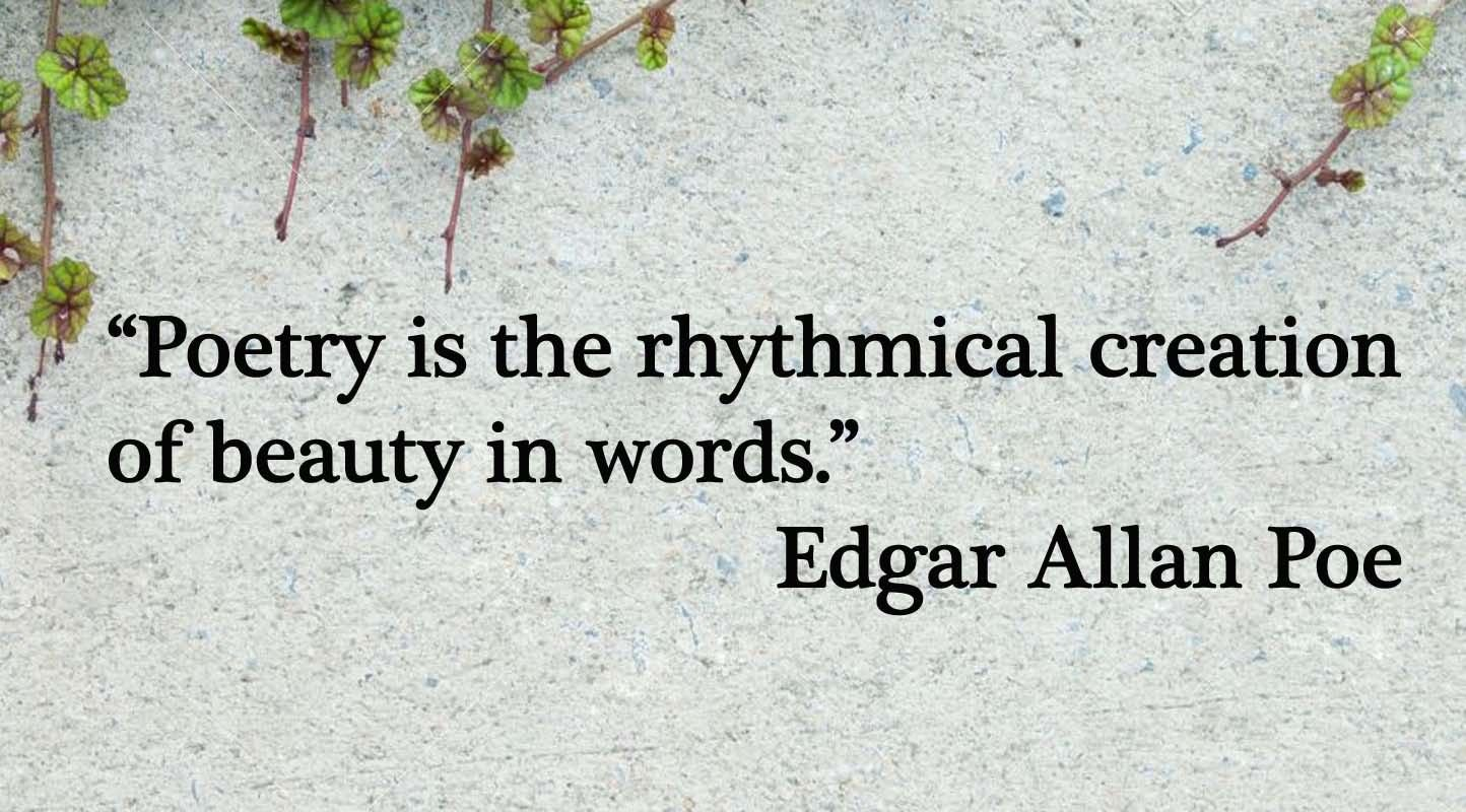 """Edgar Allan Poe Poetry is the Creation of Beauty Vinyl Sticker Decal 8""""h x 36""""w"""