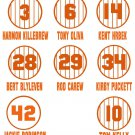 Retired Minnesota Twins Pinstripe Jersey Baseball Vinyl Decals (8 Sticker Sheet)