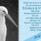 Stork Baby Shower Invitations Optional Photos & Ultrasound pic blue