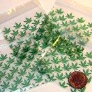 "100 Green Leaves Apple Baggies 2 x 2"" Small Zip Bags 2020"
