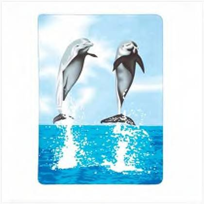 #37248 Dolphin Fleece Blanket