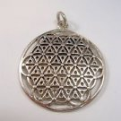 FLOWER OF LIFE PENDANT Secret Kabbalah Healing Fruit
