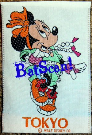 Disney Character Clothing Tags!  3+!!  Free Shipping!!