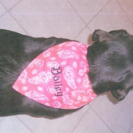 Custom Personalized Dog Collar Bandana