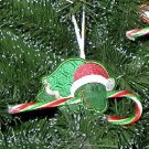 Turtle Candy Cane Hugger