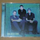 The Immigrants - Out On a Limb (2000) NEW CD