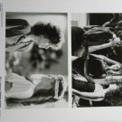 Black Widow 1987 photo 8x10 Debra Winger Theresa Russell Sami Frey BW-2