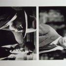 Disappearance of Garcia Lorca 1996 1997 photo 8x10 edward james olmos esai morales