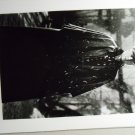 Anna Karenina 1997 photo 8x10 sean bean AK-23