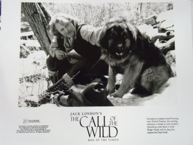 The Call of the Wild Dog of the Yukon 1997 photo 8x10 rutger hauer 1996