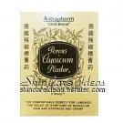 Astrapharm Chilli Brand Porous Capsicum Plaster (24 plasters)