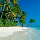 Paradise Bay BS3