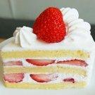 Strawberry Shortcake BS1