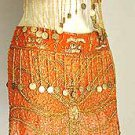 Belly Dance Costumes Orange Dress A