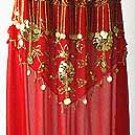Belly Dancing Costume Dress D Red