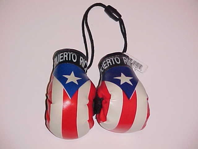 (SOLD!) Mini Puerto Rican Flag Boxing Gloves