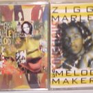 2 Ziggy Marley Reggae Cassettes-One Bright Day/Conscious Party