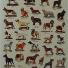 41 Dog Worldwide Art Poster Collection Gift Bulldog Terrier Shepherd Chihuahua
