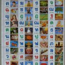 Thai Alphabet Consonant Vowel Number Poster Learn Study
