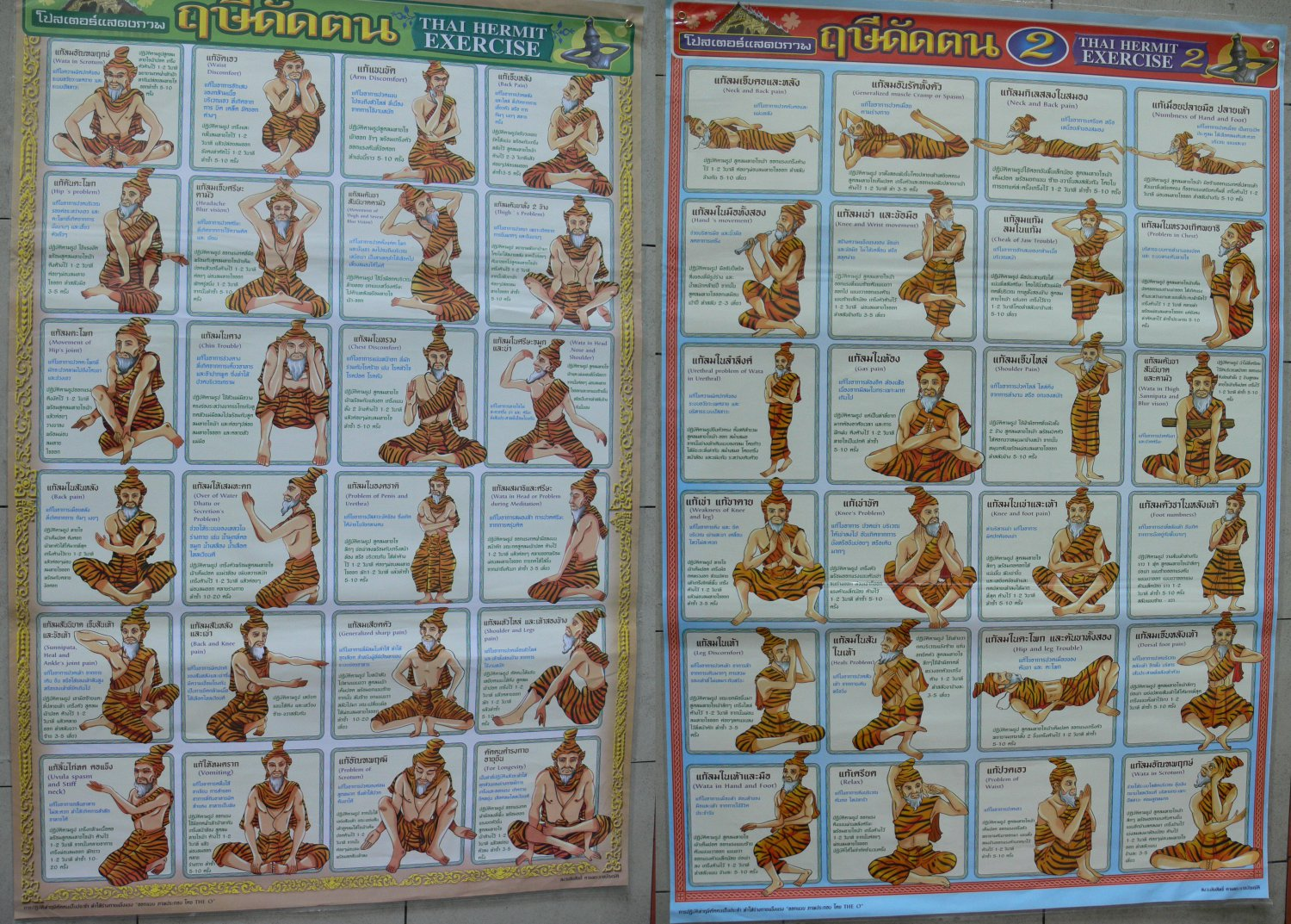 Reflexology Thai Massage Hermit Chart Foot Body Hand Face Leg Arm Back Yoga