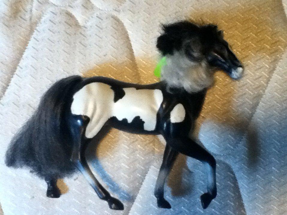 Kid Kore Horse Paint